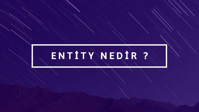 Entity Nedir ?